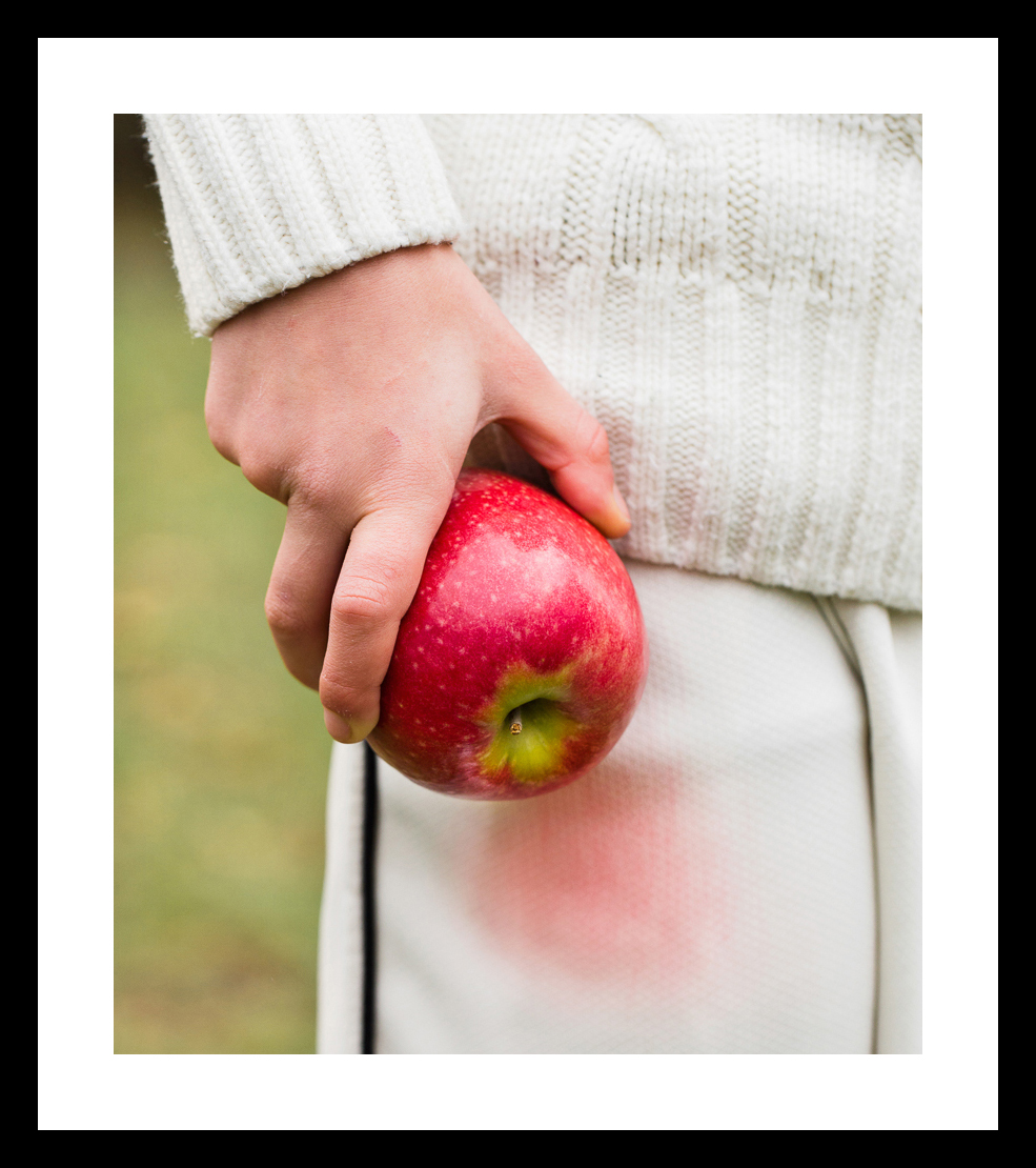 frame-08-036_121_Cricketer's Rosy Apple_Pink Lady Apple0371